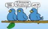 Top 10 Twitter Mistakes Users Make - inWealthandHealth - Twitter Birds 2
