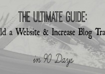 Increase Blog Traffic - Concept to 30K Views in 90 Days - In Wealth and Health new