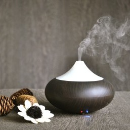 Essential Oils: The ultimate adjunct therapy