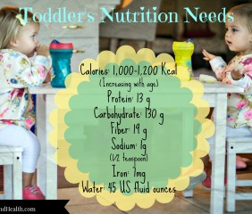 Toddler Nutrition Needs