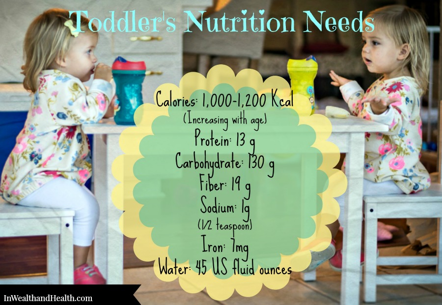 Toddler Nutrition Needs | In Wealth and Health